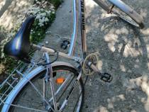 Bicicleta Shimano Dama