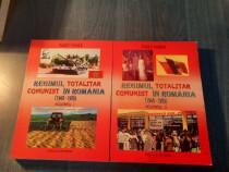Regimul totalitar comunist in Romania 2 volume Pascu Vasile
