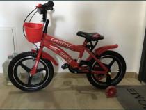Bicicleta Carpaten Sport