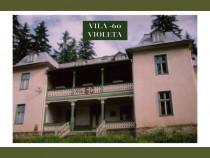 Vila turistica nr. 60- violeta, statiunea borsec