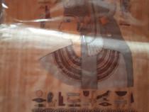 Papirus original din EGIPT