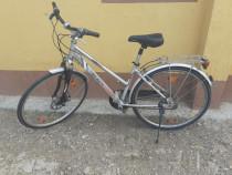Bicicletă de Damă