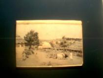 Carti postale - 8 reproduceri Th.Aman -Muzeul Arta Constanta