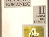 Mihail Drumes-Povestea Neamului Romanesc