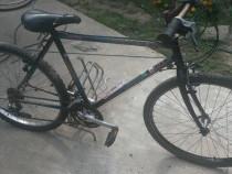 "Bicicleta 26 """