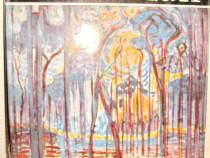 6628-Album de Arta: Mondrian 1979 cartonat gros.