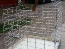 Cusca pentru animale caini pisici