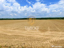 Teren de 6000 mp in Cisnadie zona Aerodromului Magura