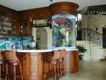 Acvarii din plexic sticla acrilica customizate complete