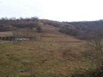 Teren Valea Garbaului 5800 mp