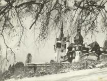"""Carte postala Sinaia 1963, Muzeul """"Peleş"""" Castelul Peles"""