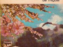 Brumă pe florile de migdal
