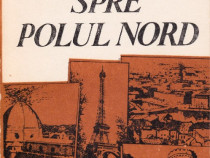 O româncă spre Polul Nord