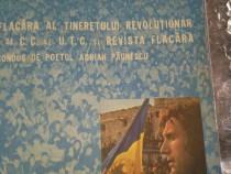 Disc vinil Adrian Paunescu - Cenaclul Flacara