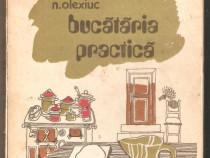 N.Olexiuc-Bucatarie Practica