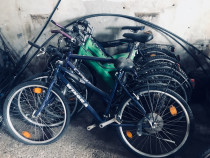Biciclete En-gros