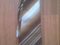 Cravata barbateasca maro
