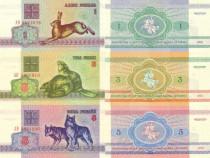 Lot 22 bancnote BELARUS 1992-2016 - UNC
