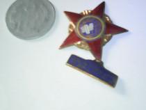 Pentru colectionari:moneda si decoratie