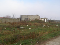 Licitatie Cereal Prod-Serv-teren +constructii Teiu 34513mp