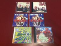 LOT 6 cd-uri Animal X (pop-dance) (vechi si RARe)