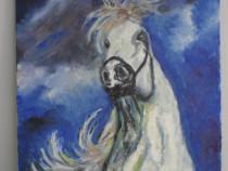 Calul alb 2-pictura ulei pe panza;MacedonLuiza