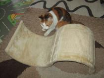 Jucărie rigidă pentru pisici de ascuțit gheruțele