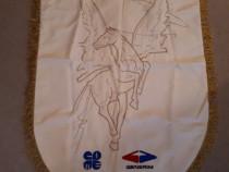 Steag heraldic