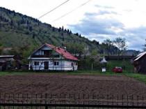 Casa 4 camere, baie, bucatarie+ 4600mp teren Savinesti