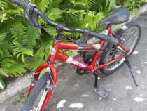 """Bicicleta copii 20"""""""