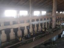 Cladirea ferma de animale Samarinesti sud-vest