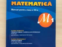 Manual de matematica pentru clasa a XII-a M1, Burtea