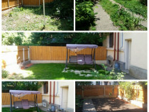 Proiectare, regândire și amenajare spațiu curte sau grădină
