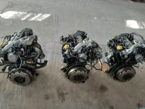 Motor 1.9 dci f9q 818 euro4 suzuki vitara