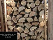 Brichete/lemne de foc/fag/salcam transport gratuit buc