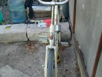 Bicicleta fiitness