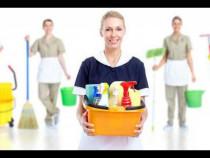 Angajam personal curatenie-Germania