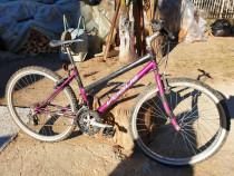 Bicicleta dama Vogue