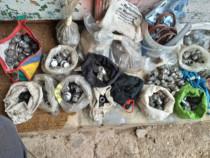 Piulite,Prezoa jante aluminiu ford,volvo,citroen,peugeot,etc