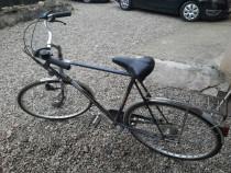 Bicicleta RIH GERMANIA