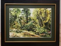 Tablou Peisaj din Gradina Botanica pictura acuarele inramat