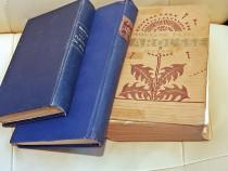 Carti vechi in franceza anii '30, Baudelaire, Bergson