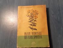 Plante medicinale din flora spontana Corneliu Constantinescu