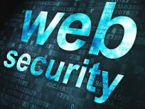 Devirusare si Implementare Securitate Web