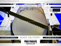 Panza fierastrau metal FEMI ABS NG160 1735x13x8/12 MASTER