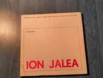 Ion Jalea Muzeul de arta Constanta album de arta