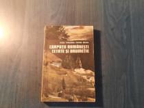 Carpatii romanesti cetate si drumetie de Radu Theodoru