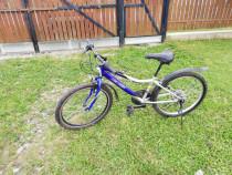 Bicicleta Copii Neuzer ATB