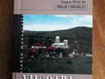 Monografie Viisoara - Valentin Visinescu / R4P4F