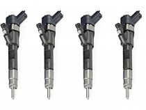 Reparatii injectoare Renault 1.9 DCI : Laguna, Megane,Scenic